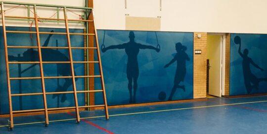 Pulastic Soundwall gymzaal Heerenveen